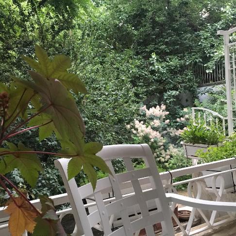 عکس خانه با صفای نیکی کریمی در زعفرانیه!
